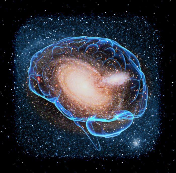 Con người là tiểu vũ trụ
