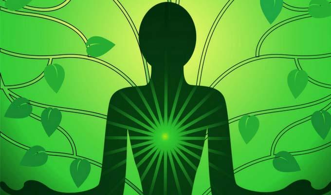5 công cụ phát triển cơ thể toàn diện