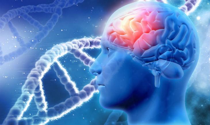 Trị liệu bệnh não bằng cái nhìn khoa học