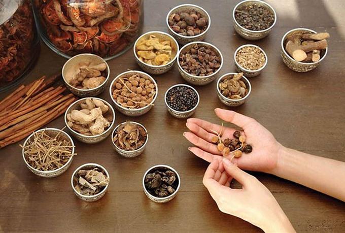 Khác nhau giữa thảo dược và huyệt đạo trong trị liệu