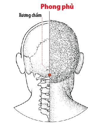 Huyệt Phong phủ