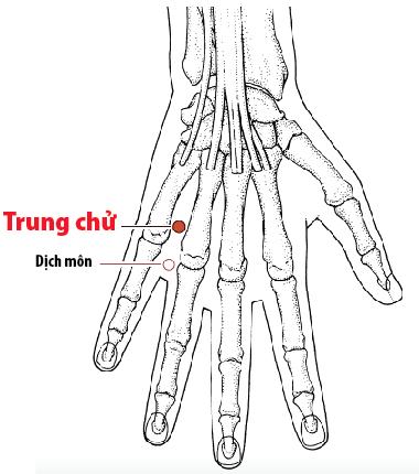 Huyệt Trung chử