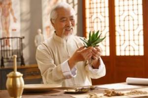 Một bác sĩ đông y của Trung Quốc nghiên cứu về thảo dược